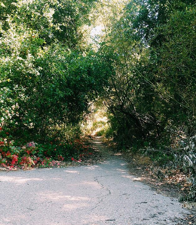 santa ynez trail