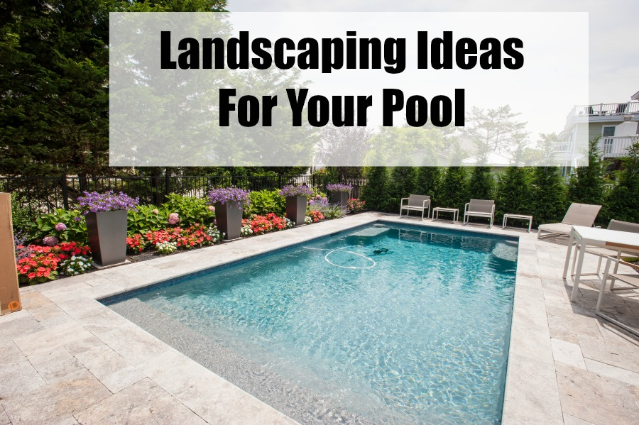Pool Landscaping Ideas For Your Home Barbers Fresh Meadow Nursery