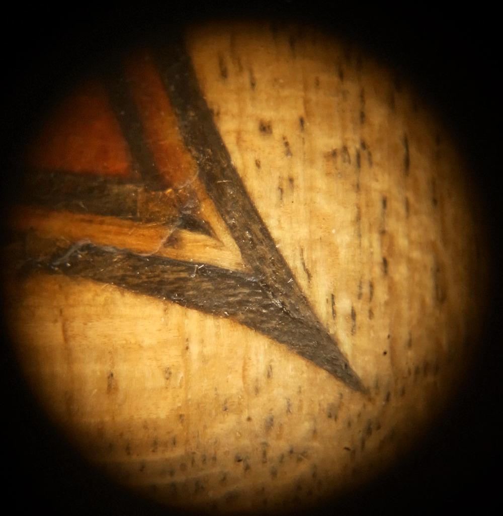 Strad microscop tr.jpg