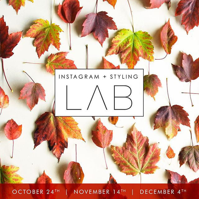 Instagram isn't a numbers game, it's a community building game and there's so much more that goes into it than posting pretty images. We're teaming up with @labmpls and @maemae_co for three more classes to help define your voice, teach you how to create brand-right images, and build strategy for attracting new followers and maximizing engagement. Sign up over at @labmpls 💕 and let us know if you're joining us!