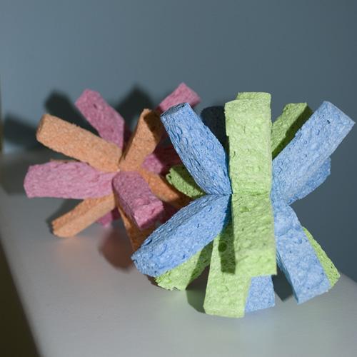sponge1.jpg
