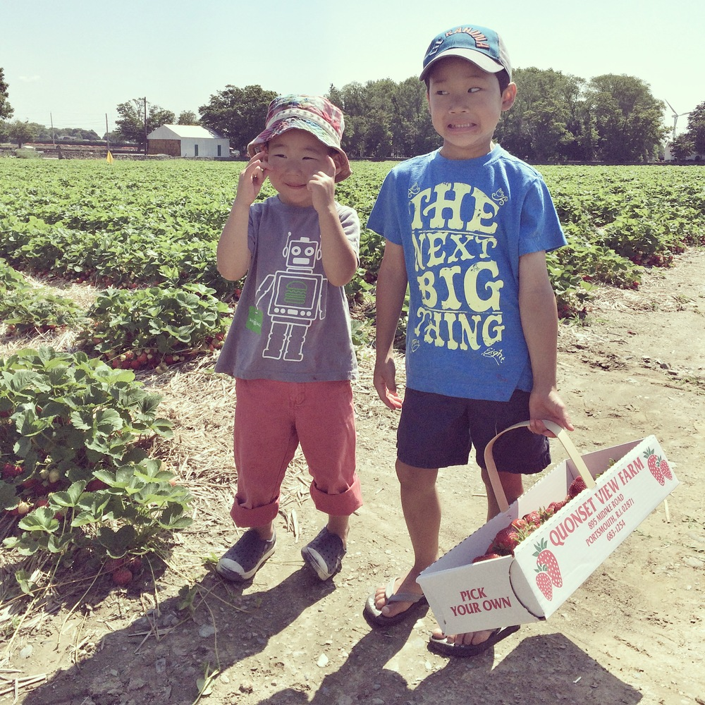 Summer Adventure No. 9: Strawberry Picking!! (I feel overwhelmed by the field too, Spencer.)