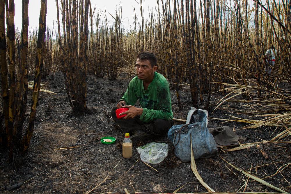 Celson Martinez, 40, of Los Almendros eats breakfast in a sugarcane field near Suchitoto, El Salvador.