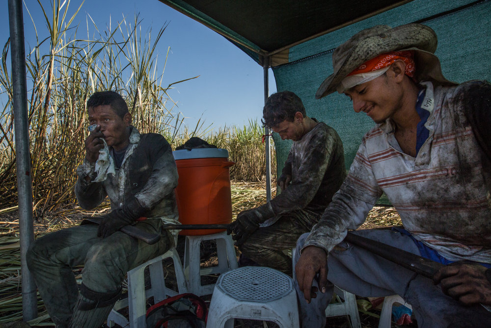 Workers participating in the accelerometer study take a break under the shade canopies provided as part of the WE Program in a sugarcane field outside of Los Almendros, Cuscatlan, El Salvador.
