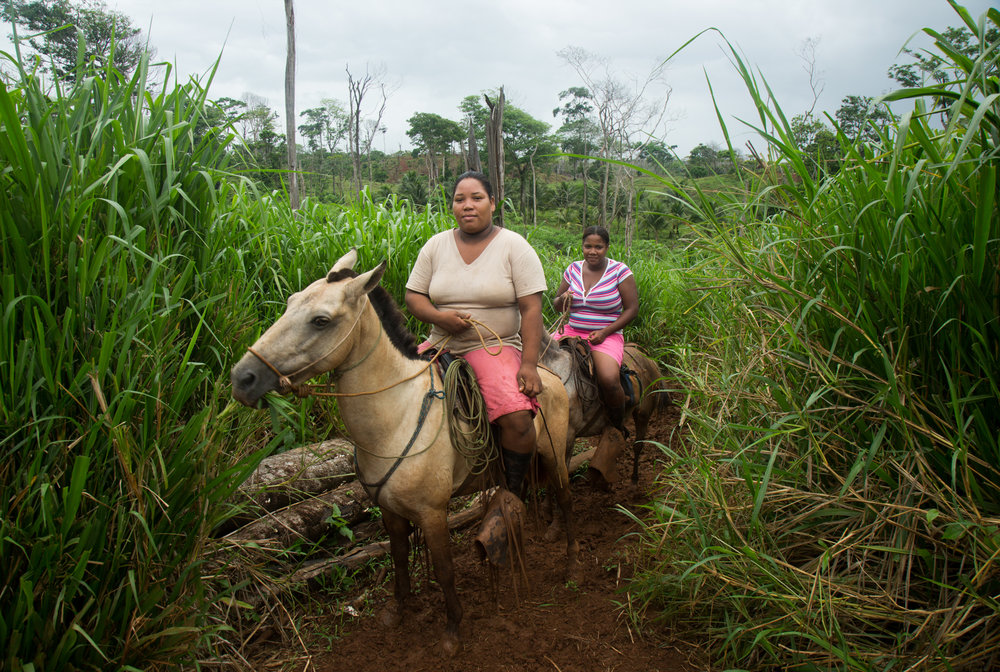 Wendy Quinn, 24, vice-president of Monkey point, and Ligia Bridgette McElroy return to their village on horseback after planting rice with other community members on her farm near their community, an afro-kriol community on Nicaragua's southeastern Caribbean coast.