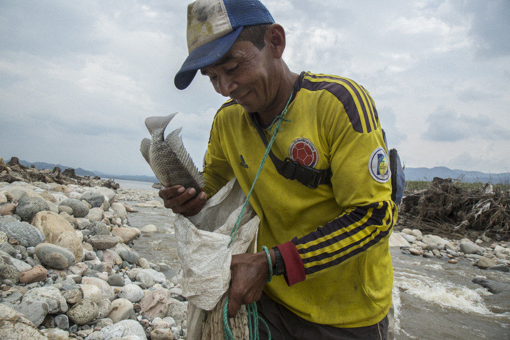 A fisherman manages to catch a fish in a flooded tributary river that used to flow through forest into the Magdalena River, but now dies in the reservoir created by the Quimbo dam, greatly reducing the fish population due to algae blooms and disruption of habitat. Near Las Jaguas, Huila, Colombia. 2017