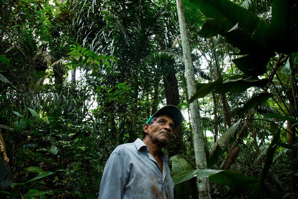 """Modesto Paredes Vega de 66 años, dice que """"el paraíso ha terminado"""", refiriéndose a sus 10 hectáreas de tierra que compró hace 10 años. Aparte del bosque lleno de pájaros y animales que él dice han desaparecido, Modesto tenía un proyecto de pescado donde tenía 1.000 peces en cestas en el río que murió debido al agua caliente y contaminada que es devuelta a los ríos. Su tierra también experimenta terremotos, 800 en un año debido a la proximidad de su propiedad a Pad 6, una plataforma de inyección de agua para extraer petróleo. Modesto dice que se convertirá en un desplazado ambiental. Rubiales, Meta, Colombia 10 de abril de 2017"""