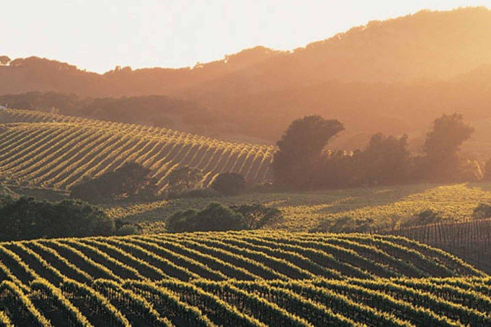 Wine Tasting San Luis Obispo Paso Robles