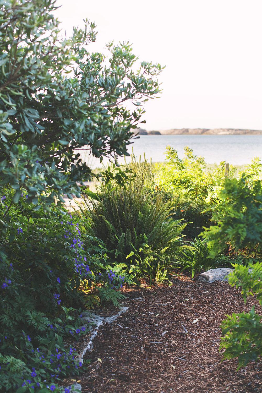 Back Bay Inn Garden