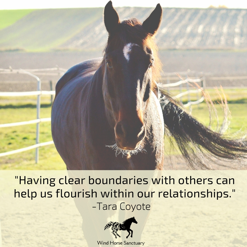 Learn Healthy Boundaries 2 - Wind Horse Sanctuary.jpg