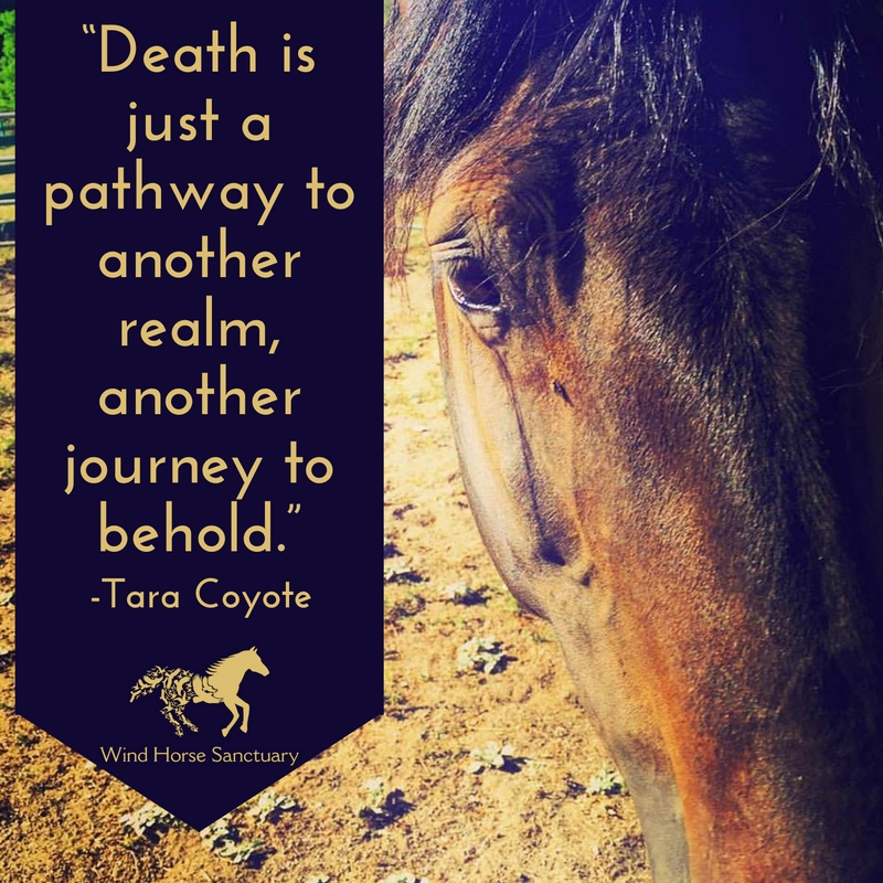 Death Quote 1 - Wind Horse Sanctuary.jpg