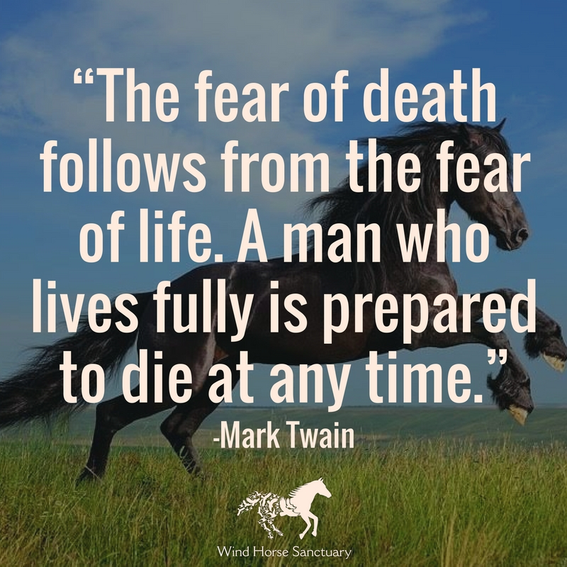 Death Quote 2 - Wind Horse Sanctuary.jpg