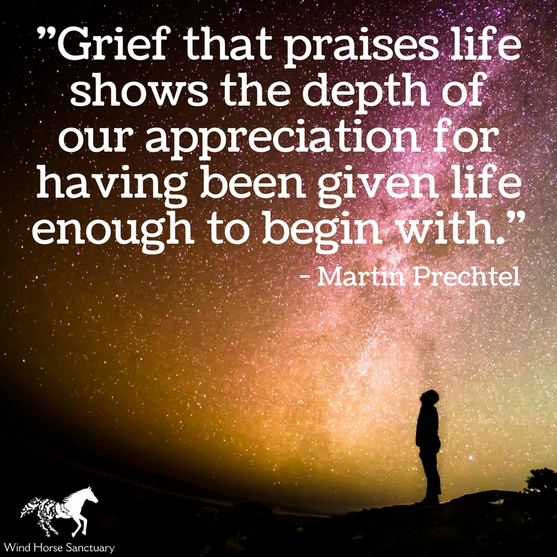 Grief Quote 2 - Wind Horse Sanctuary.jpg
