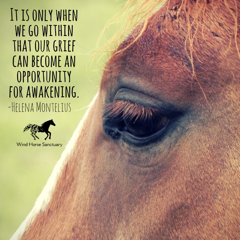Grief Quote 4 - Wind Horse Sanctuary.jpg