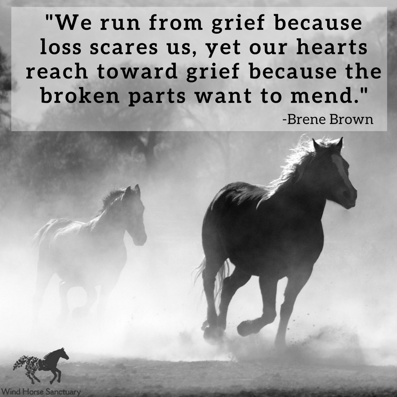 Grief Quote 5 - Wind Horse Sanctuary.jpg