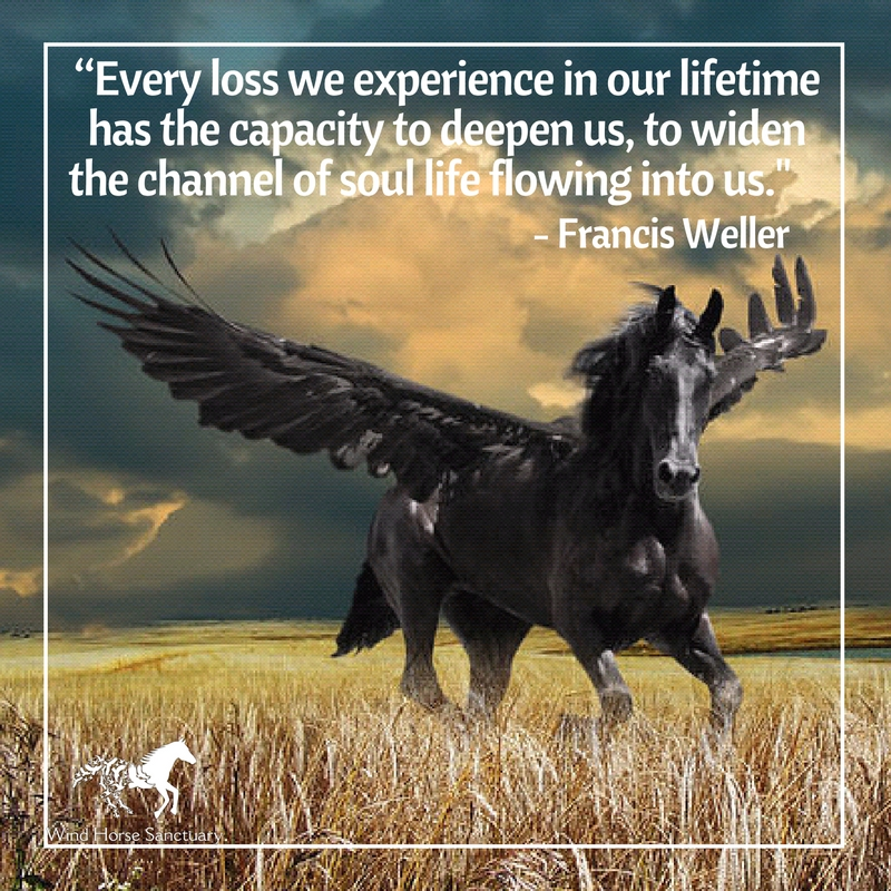 Grief Quote 6 - Wind Horse Sanctuary.jpg