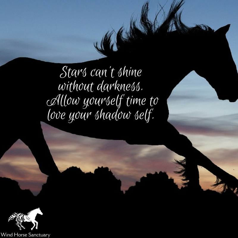 Embracing Our Shadow 2 - Wind Horse Sanctuary.jpg