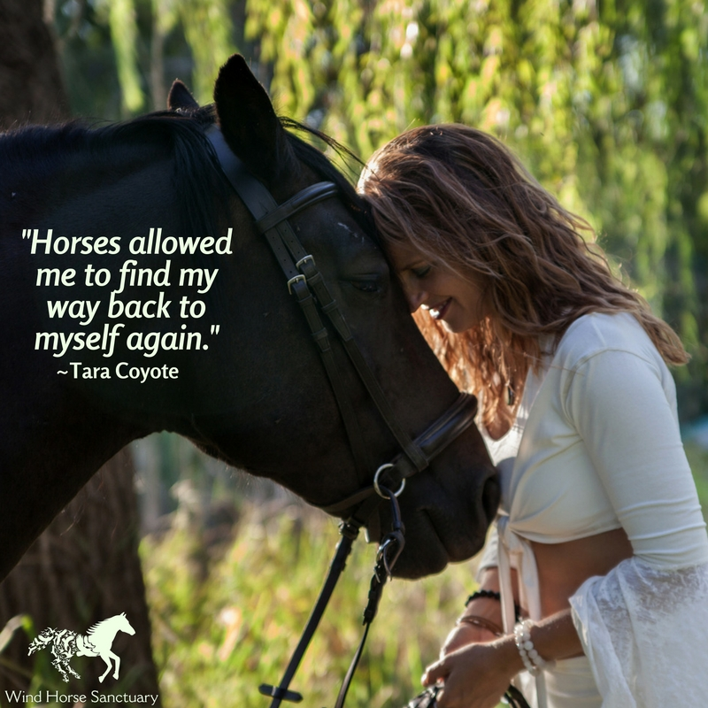 How the Horses Saved My Life - Wind Horse Sanctuary.jpg