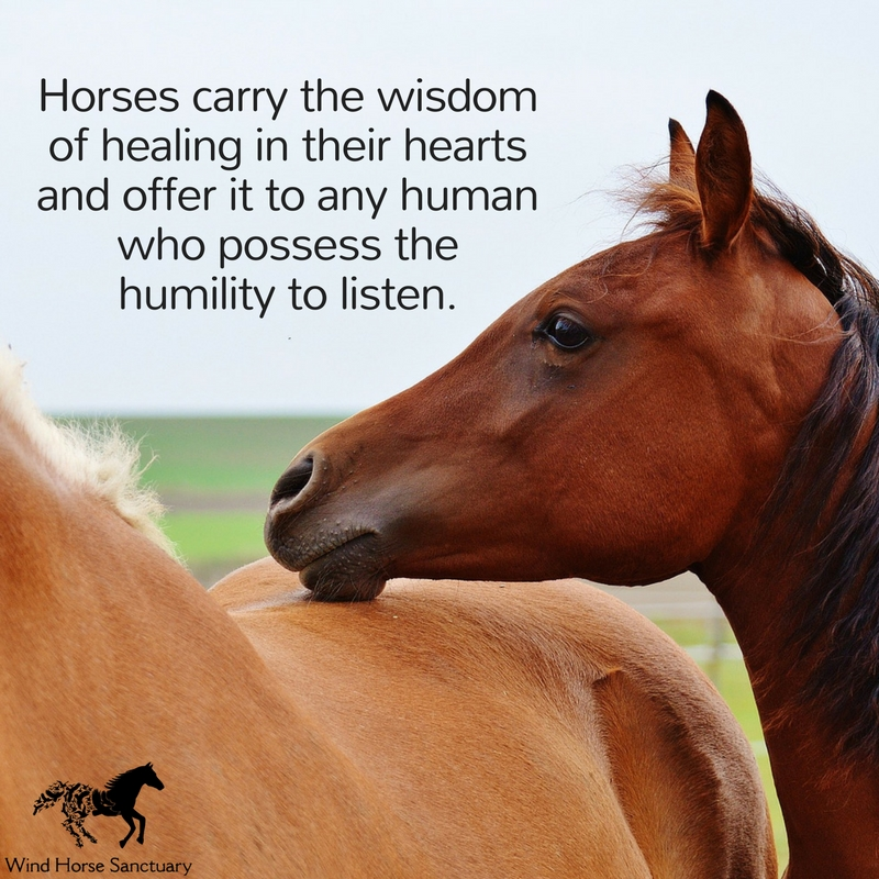 Inspirational Quote 3 - Wind Horse Sanctuary.jpg