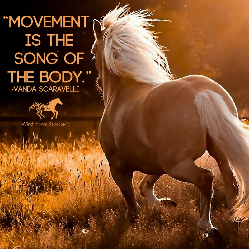 Moving Through Sacred Space 2 - Wind Horse Sanctuary.jpg