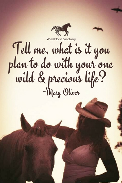 Inspiration - Precious Life Quote - Wind Horse Sanctuary.jpg