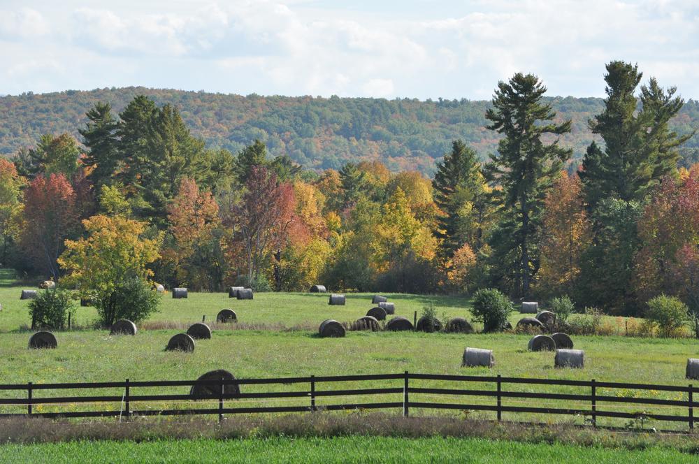 LANDLAB - Hendrick Farm