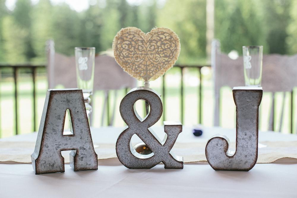 20160708-hodgsonwedding2-172.jpg