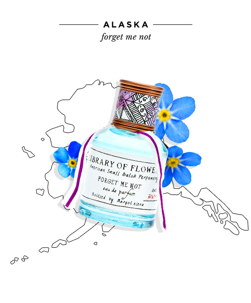 state-fragrances-alaska-forget-me-not.jpg