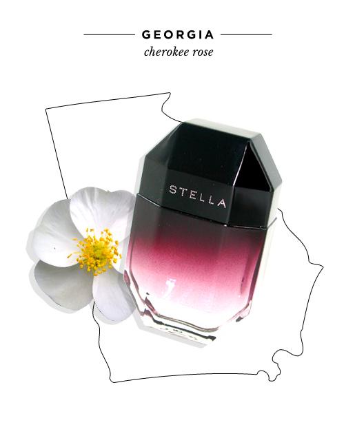 state-fragrances-georgia-cherokee-rose.jpg