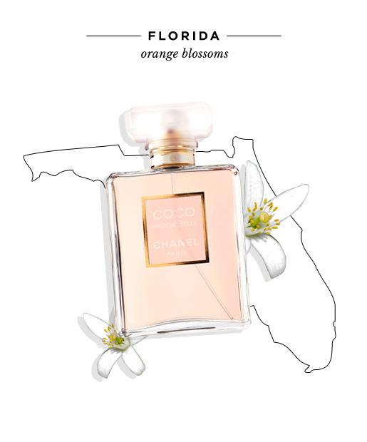 state-fragrances-florida-orange-blossoms.jpg