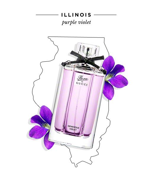 state-fragrances-illinois-purple-violet.jpg