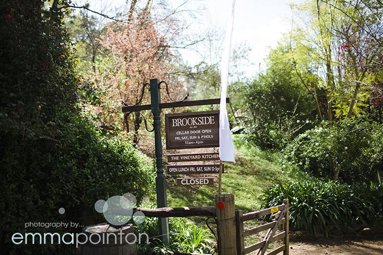 Brookside Vineyard Wedding001.jpg