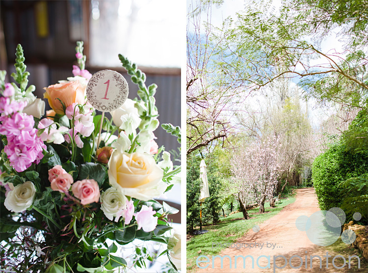 Brookside Vineyard Wedding004.jpg