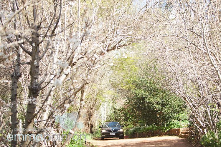 Brookside Vineyard Wedding023.jpg