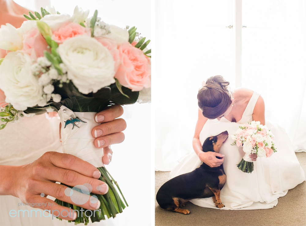 dachshund wedding dog