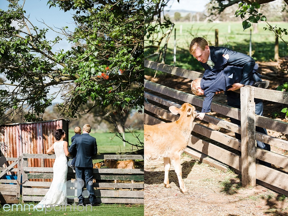 Alverstoke Farm Wedding 34.jpg