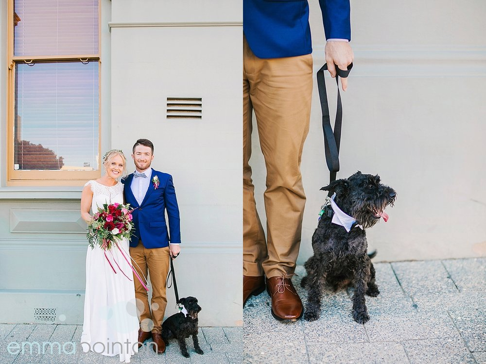 Wedding dog Fremantle