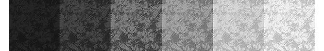 TextureColorationBW.png