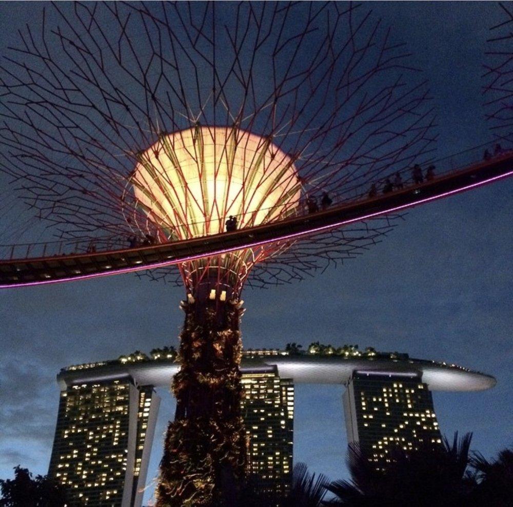 Sara in Singapore3.jpg