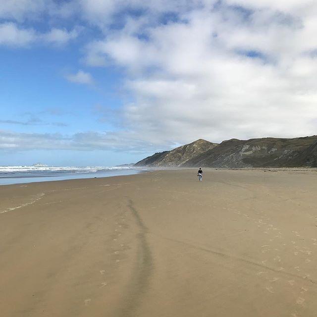 Ocean Beach #NZ