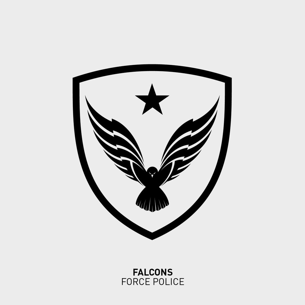 02falcons-01.jpg