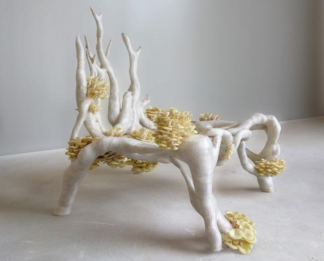 Mycelium Project 1.0 - Myceliumchair by Eric Klarenbeek (Image courtesy of Eric Klarenbeek)