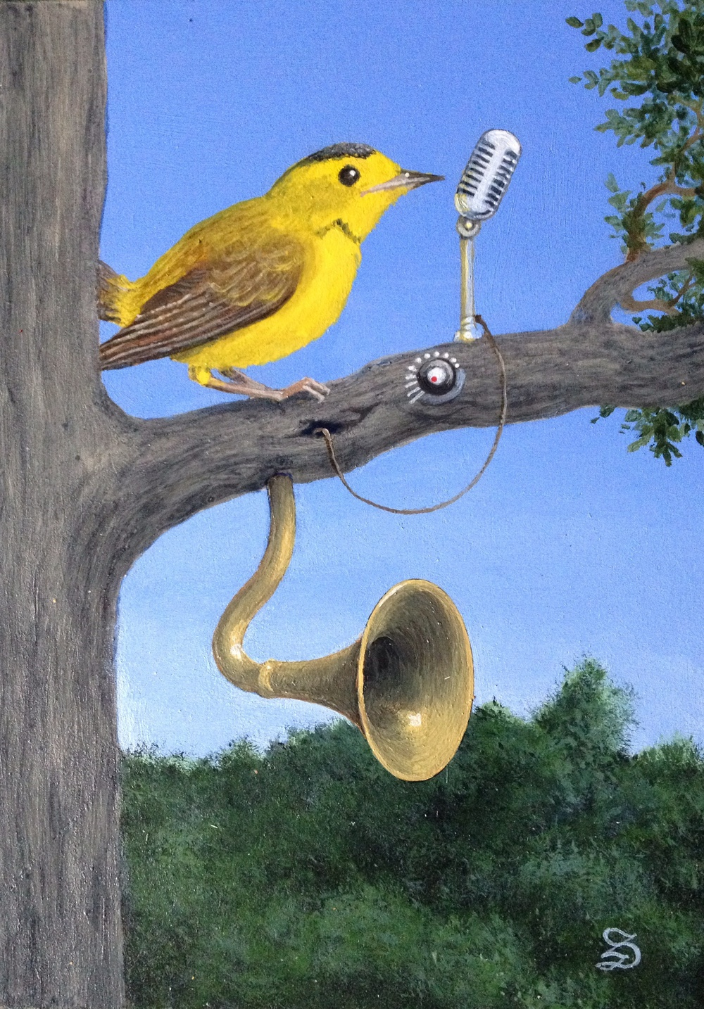 "Amplified Warbler 2015, 5""X7"""