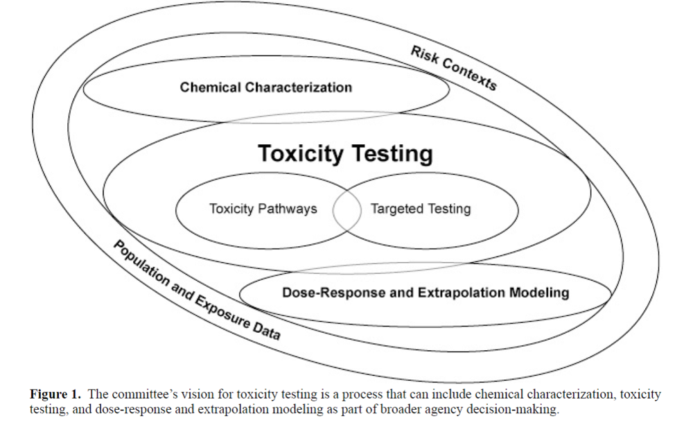 "Reproduced from the 2007 NAS report, ""Toxicity Testing in the 21st Century.""  The central aspect of this new vision is elucidation of toxicity pathways from the molecular level up, followed by ""ground truthing"" in human populations using biomarkers or molecular epidemiology studies."