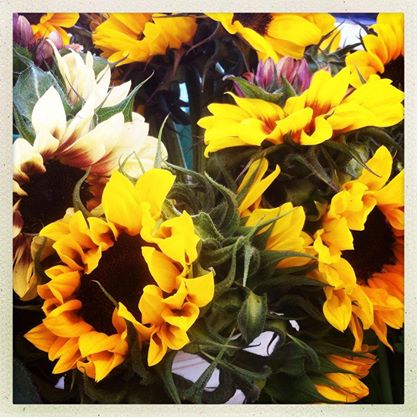 We have flowers too!