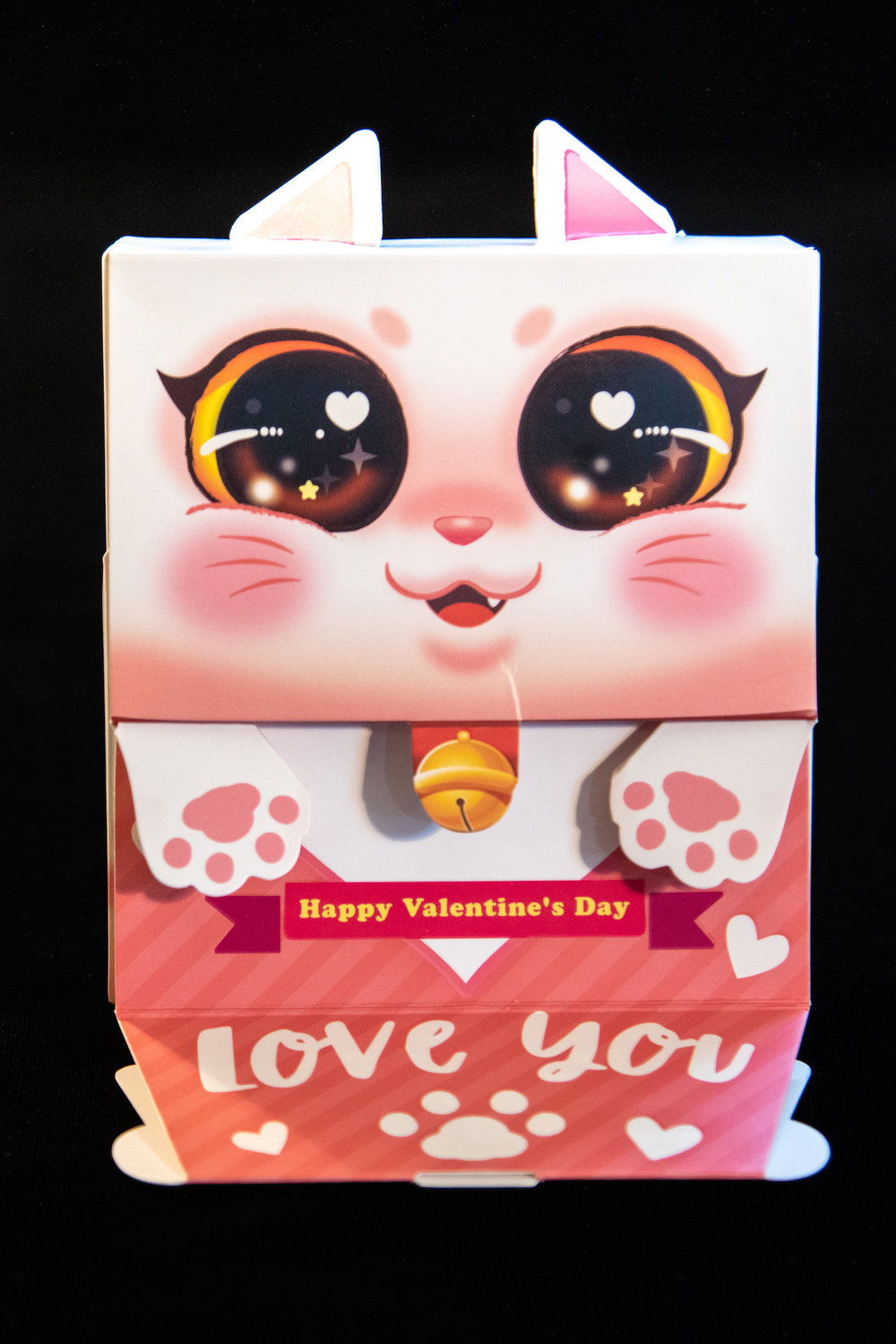 KittyPaw_VDay_Edition (3 of 10).jpg