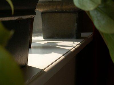 overig werk vensterbank 8.jpg