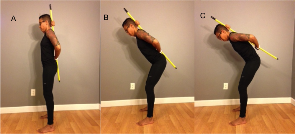 Image 1: A - Starting position. B - Proper Hip Hinge. C - Incorrect hip hinge with excessive spinal flexion and loss of the neutral spine.