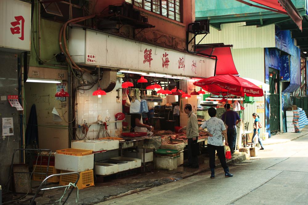 rödalampor-fisk-hk.jpg