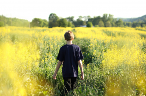 Boy_wandering_in_field_300_198_int_c1-1x.png